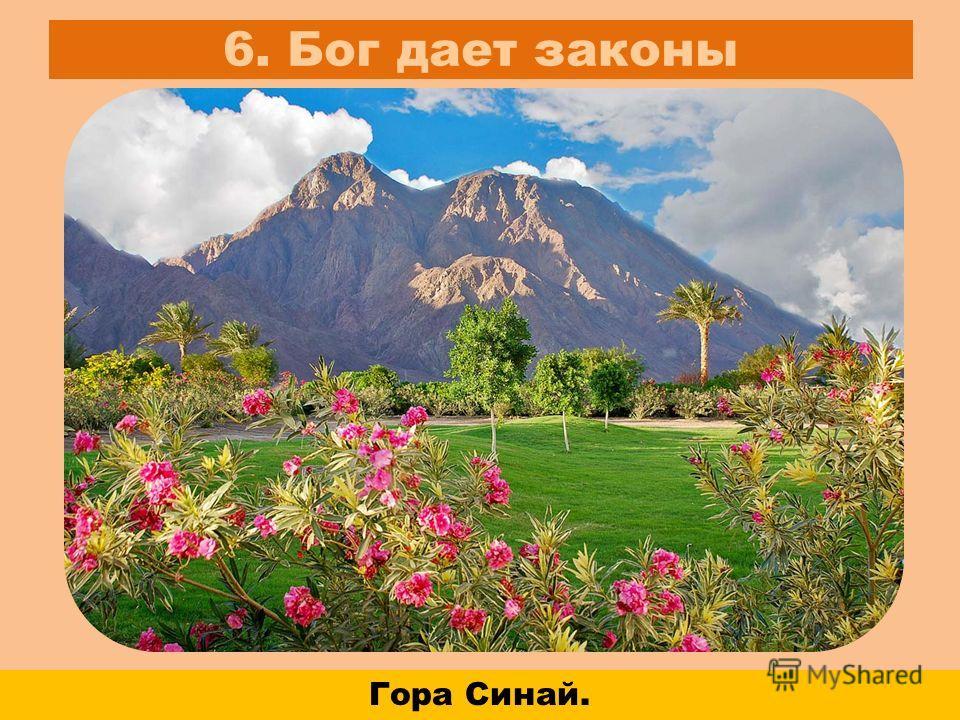 6. Бог дает законы Гора Синай.