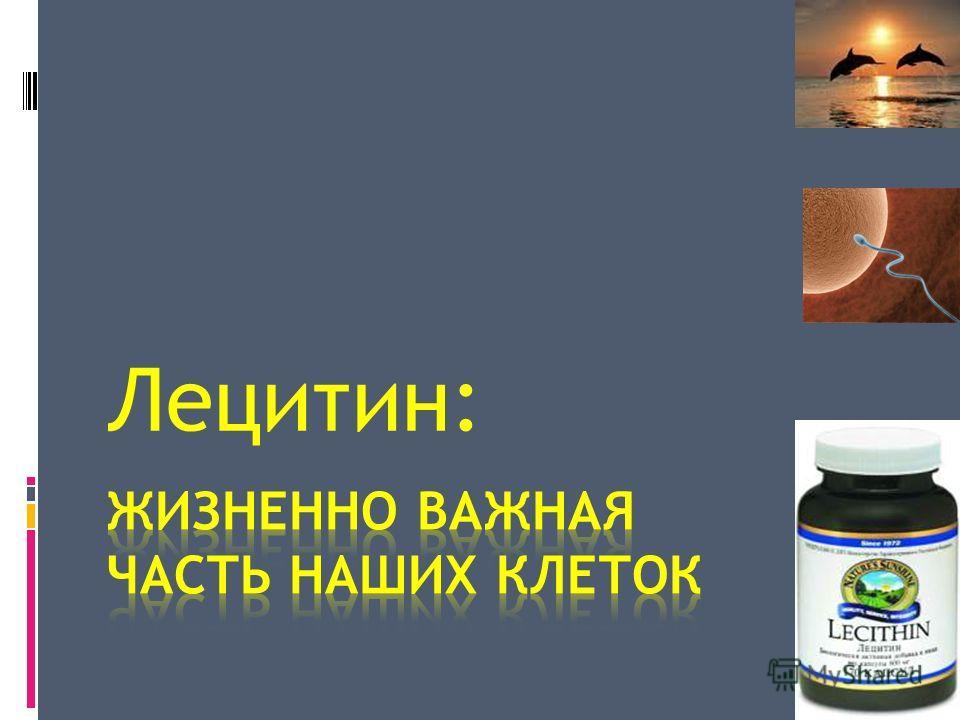 Лецитин: