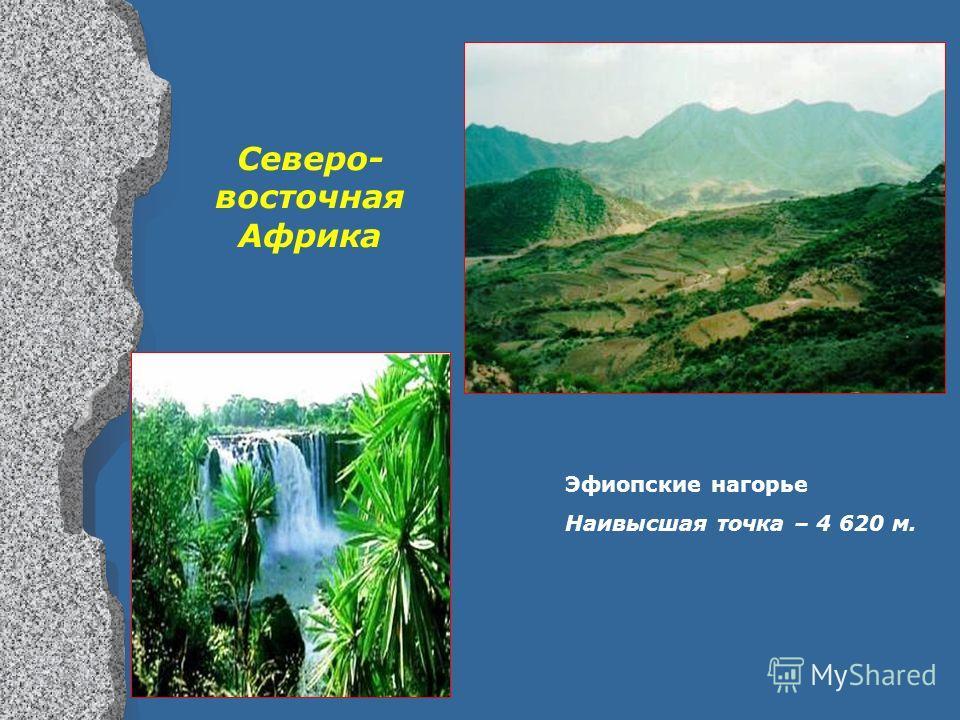 Эфиопские нагорье Наивысшая точка – 4 620 м. Северо- восточная Африка