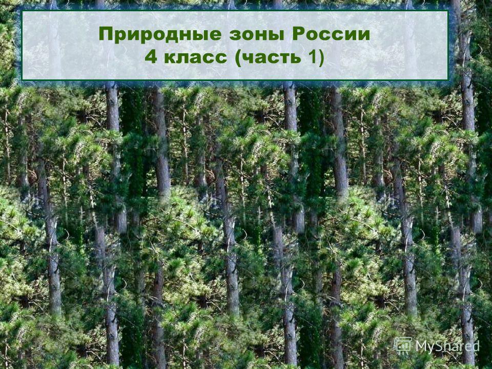 Природные зоны России 4 класс (часть 1)