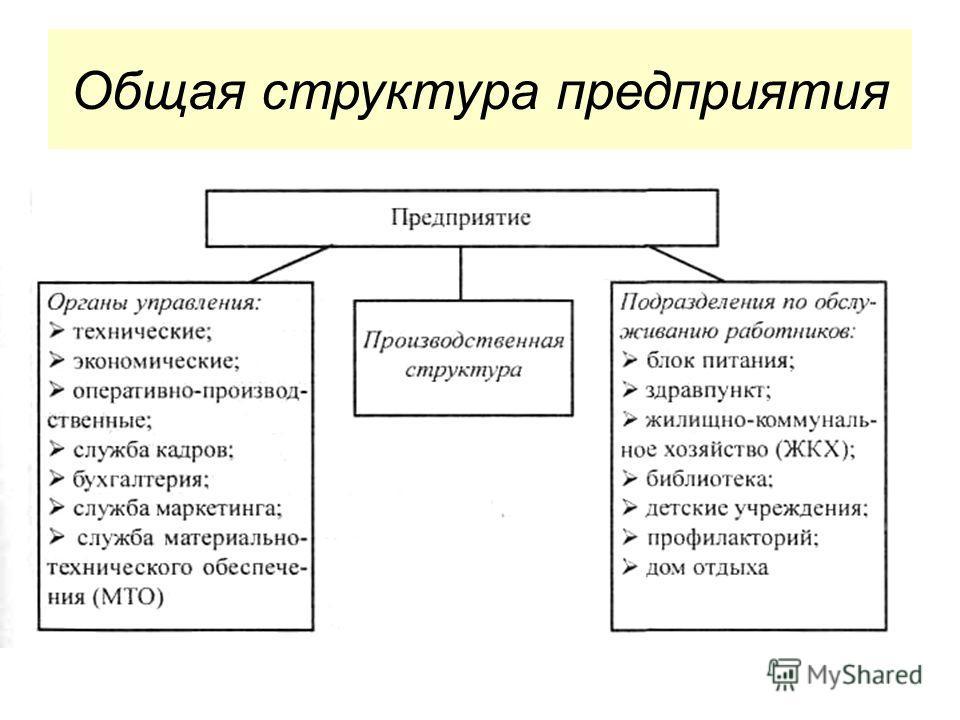 Общая структура предприятия