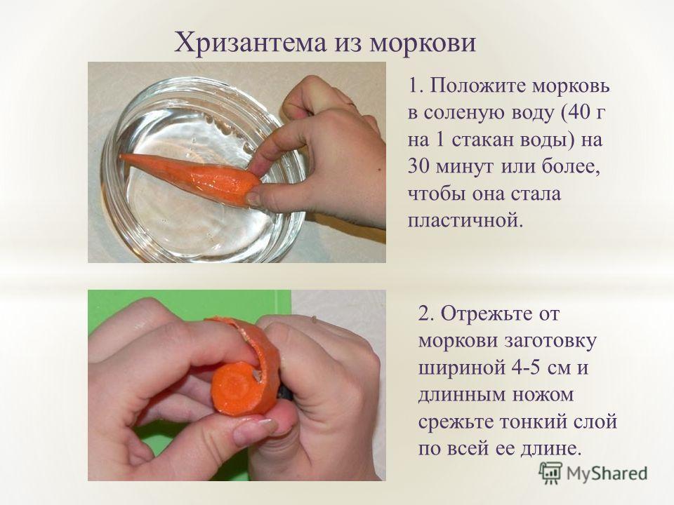 Хризантема из моркови 1. Положите морковь в соленую воду (40 г на 1 стакан воды) на 30 минут или более, чтобы она стала пластичной. 2. Отрежьте от моркови заготовку шириной 4-5 см и длинным ножом срежьте тонкий слой по всей ее длине.