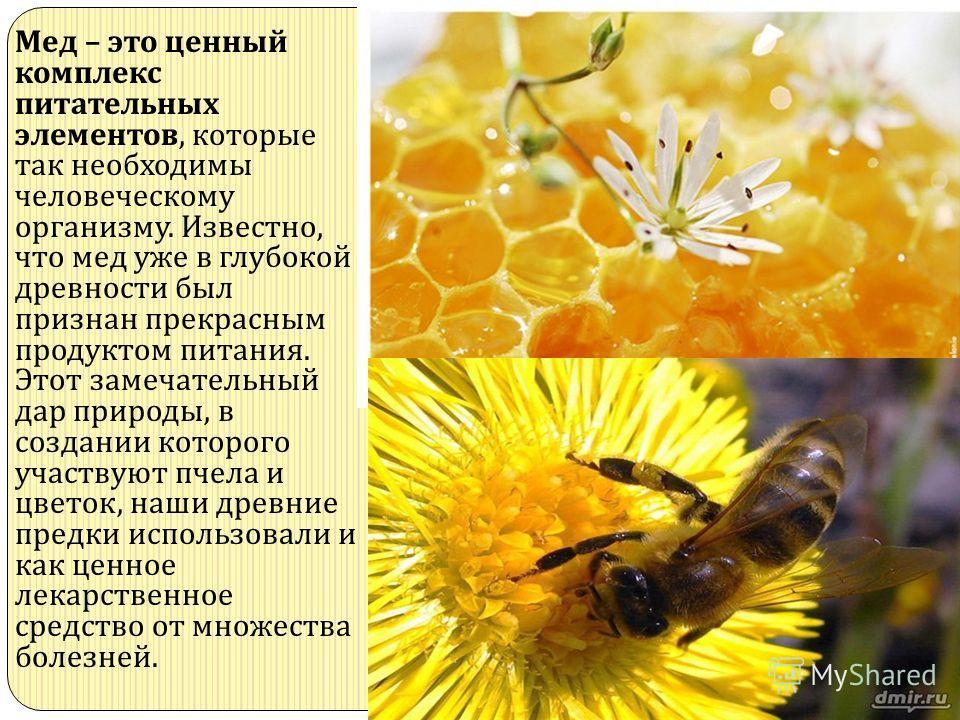 Мед – это ценный комплекс питательных элементов, которые так необходимы человеческому организму. Известно, что мед уже в глубокой древности был признан прекрасным продуктом питания. Этот замечательный дар природы, в создании которого участвуют пчела