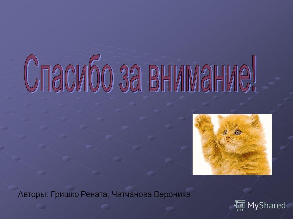 Авторы: Гришко Рената, Чатчанова Вероника.