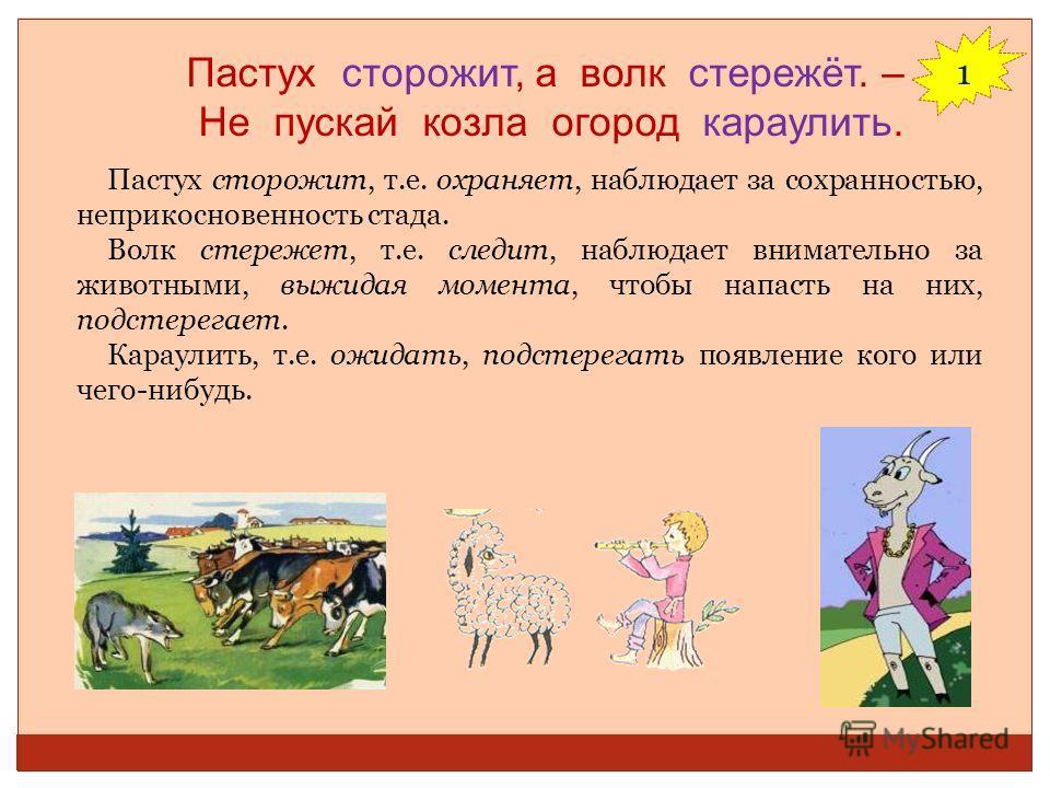 Пастух сторожит, а волк стережёт. – Не пускай козла огород караулить. Пастух сторожит, т.е. охраняет, наблюдает за сохранностью, неприкосновенность стада. Волк стережет, т.е. следит, наблюдает внимательно за животными, выжидая момента, чтобы напасть