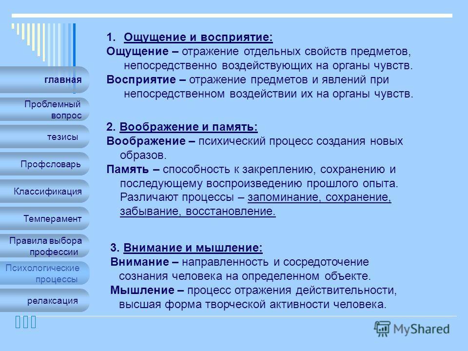 главная Проблемный вопрос Профсловарь Классификация Темперамент Правила выбора профессии Психологические процессы тезисы релаксация 1.Ощущение и восприятие: Ощущение – отражение отдельных свойств предметов, непосредственно воздействующих на органы чу