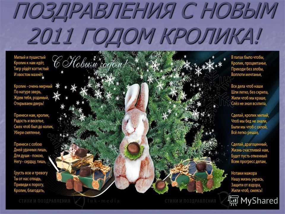 ПОЗДРАВЛЕНИЯ С НОВЫМ 2011 ГОДОМ КРОЛИКА!