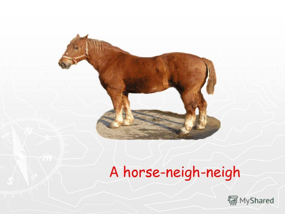 A horse-neigh-neigh
