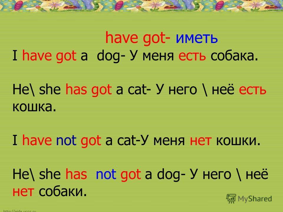 have got- иметь I have got a dog- У меня есть собака. He\ she has got a cat- У него \ неё есть кошка. I have not got a cat-У меня нет кошки. He\ she has not got a dog- У него \ неё нет собаки.