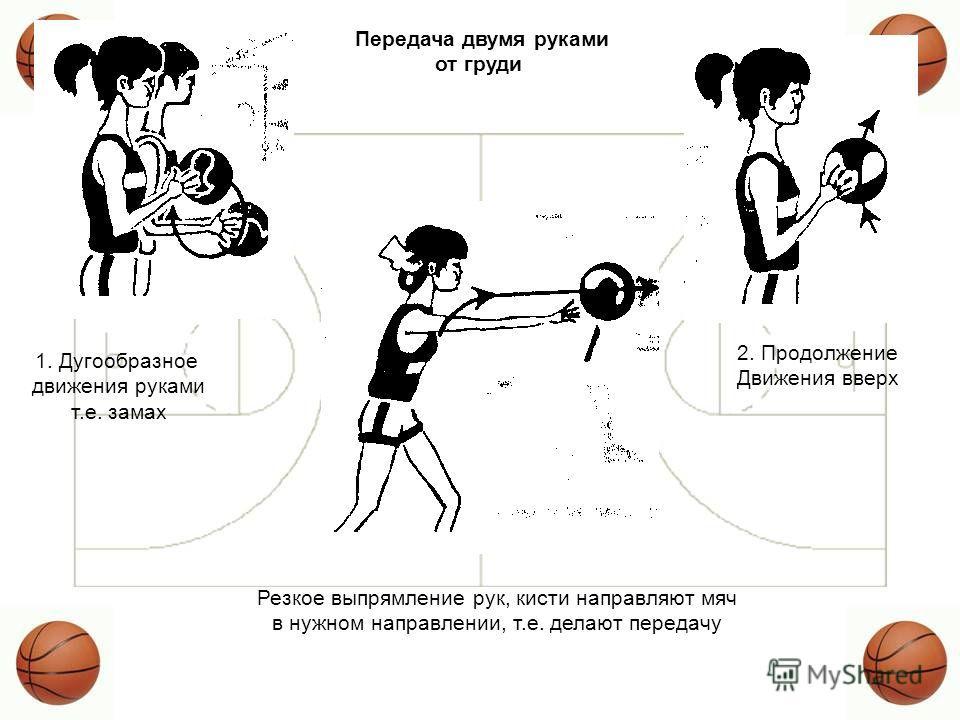обучение ловля передача мяча двумя руками от груди