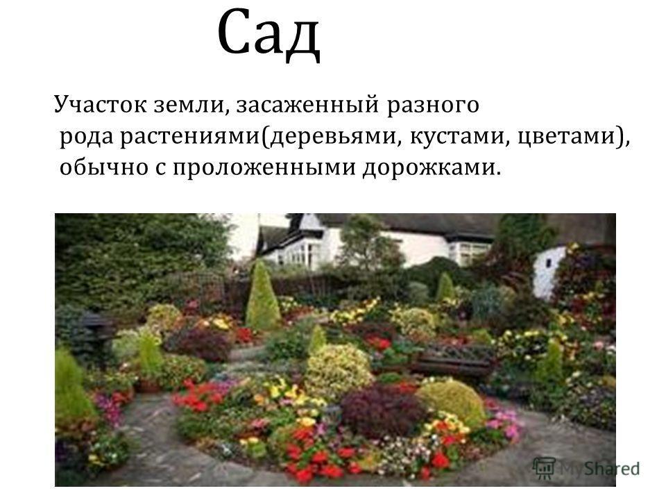 Сад Участок земли, засаженный разного рода растениями(деревьями, кустами, цветами), обычно с проложенными дорожками.