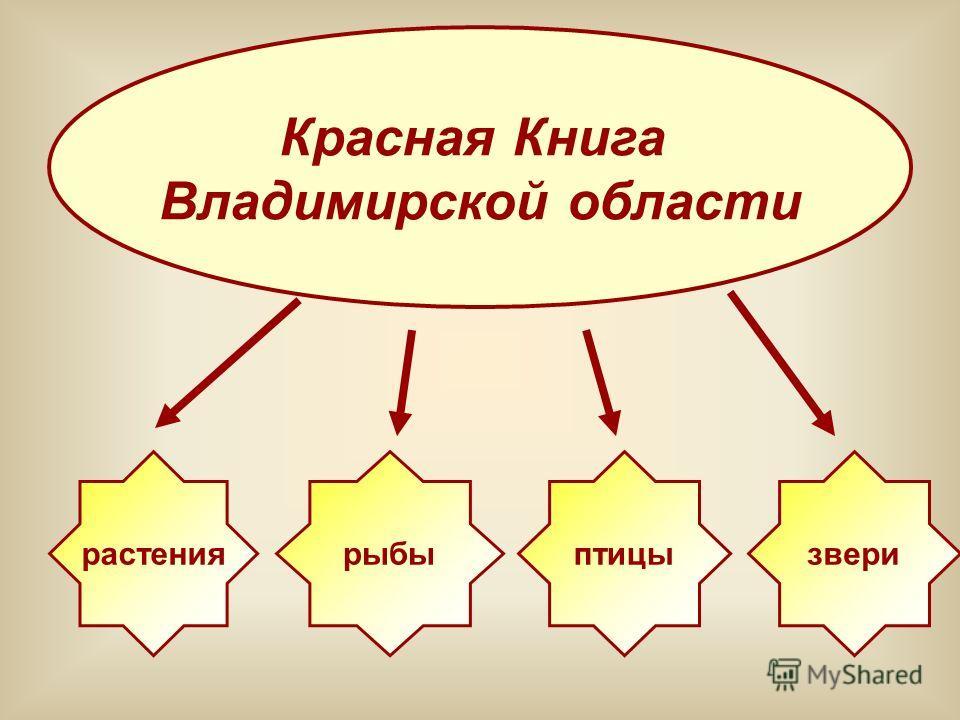 Красная Книга Владимирской области растениярыбыптицызвери