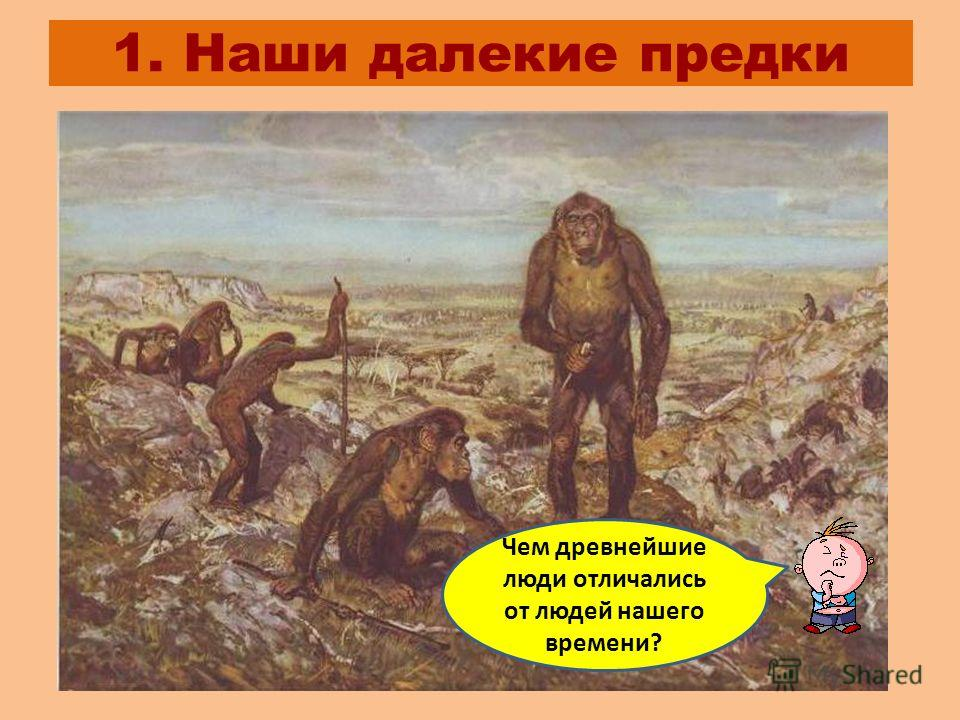 1. Наши далекие предки Чем древнейшие люди отличались от людей нашего времени?
