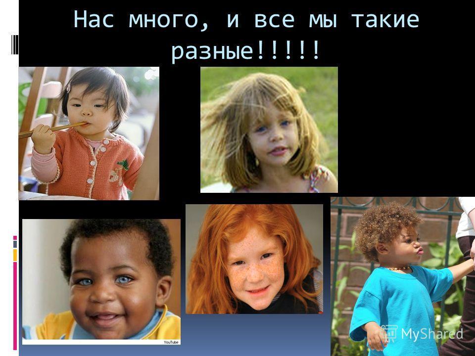 Нас много, и все мы такие разные!!!!!