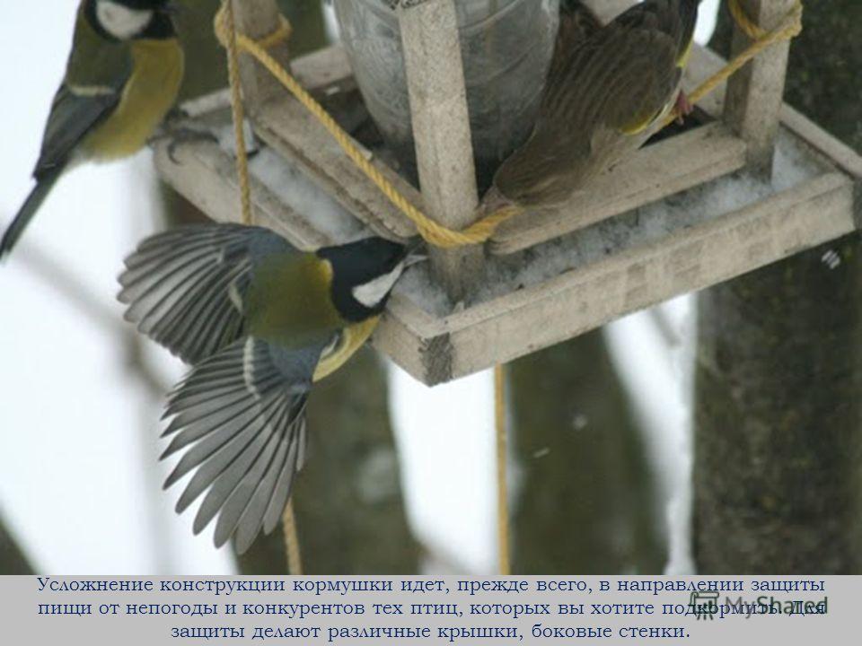 Усложнение конструкции кормушки идет, прежде всего, в направлении защиты пищи от непогоды и конкурентов тех птиц, которых вы хотите подкормить. Для защиты делают различные крышки, боковые стенки.