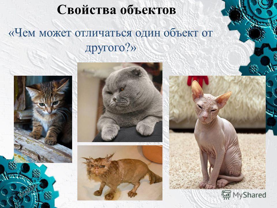 Свойства объектов «Чем может отличаться один объект от другого?»