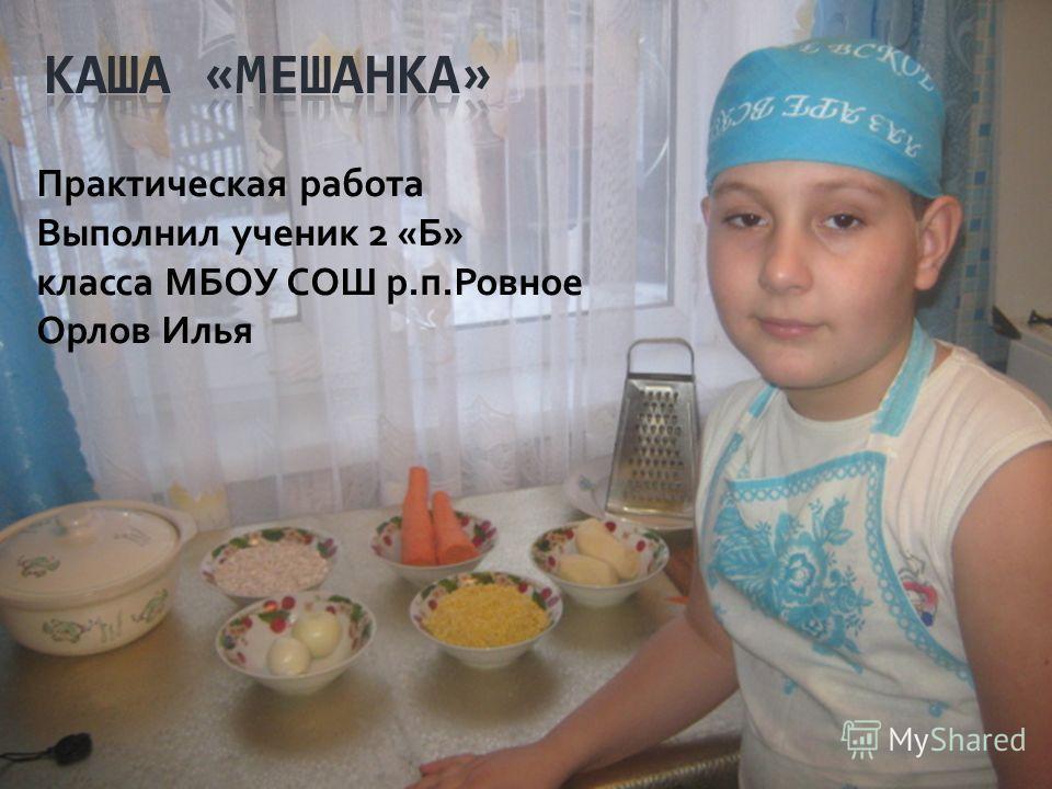 Практическая работа Выполнил ученик 2 «Б» класса МБОУ СОШ р.п.Ровное Орлов Илья