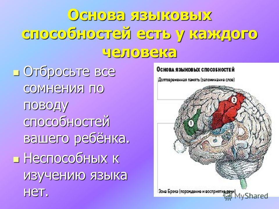 Основа языковых способностей есть у каждого человека Отбросьте все сомнения по поводу способностей вашего ребёнка. Отбросьте все сомнения по поводу способностей вашего ребёнка. Неспособных к изучению языка нет. Неспособных к изучению языка нет.