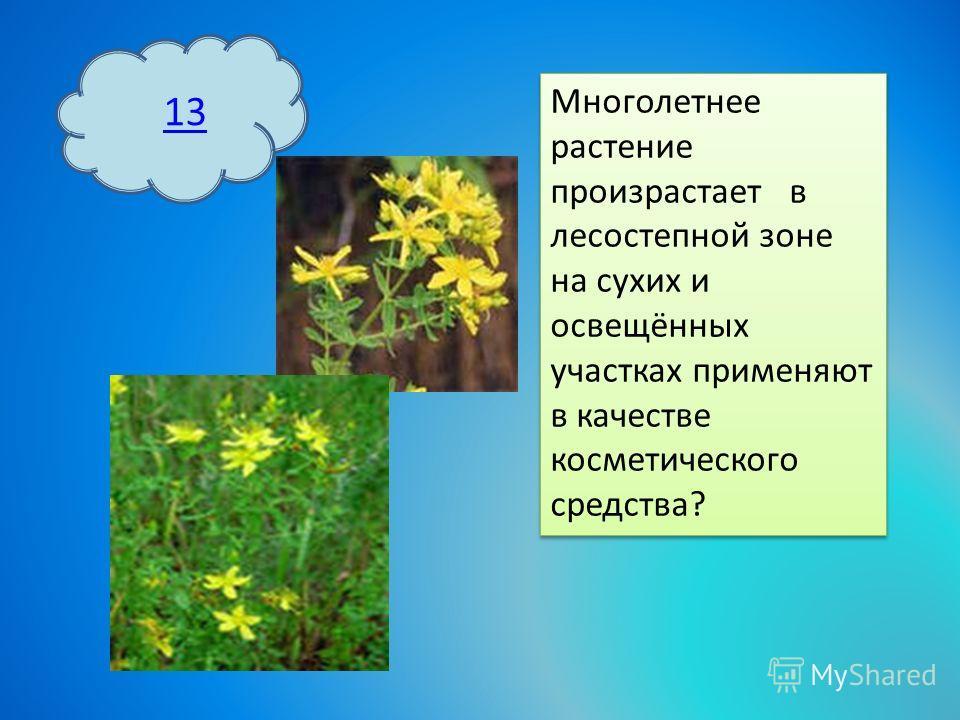 13 Многолетнее растение произрастает в лесостепной зоне на сухих и освещённых участках применяют в качестве косметического средства?