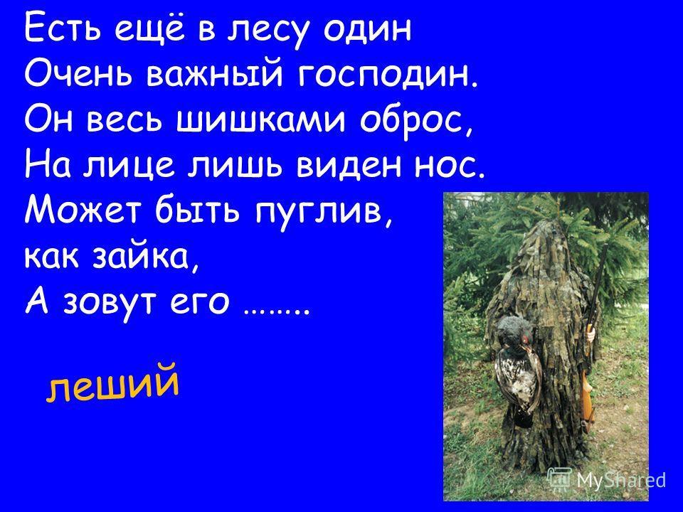 леший Есть ещё в лесу один Очень важный господин. Он весь шишками оброс, На лице лишь виден нос. Может быть пуглив, как зайка, А зовут его ……..