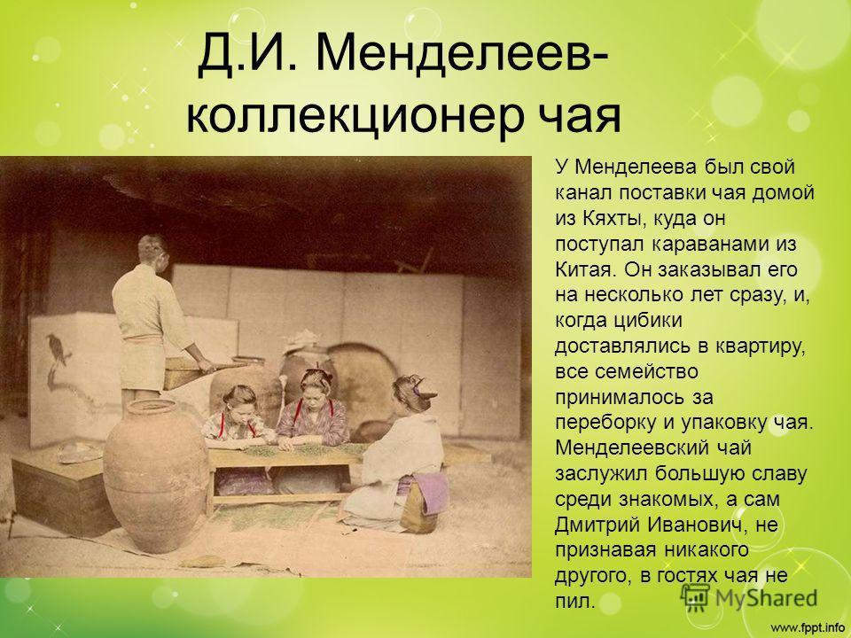 Д.И. Менделеев- коллекционер чая У Менделеева был свой канал поставки чая домой из Кяхты, куда он поступал караванами из Китая. Он заказывал его на несколько лет сразу, и, когда цибики доставлялись в квартиру, все семейство принималось за переборку и