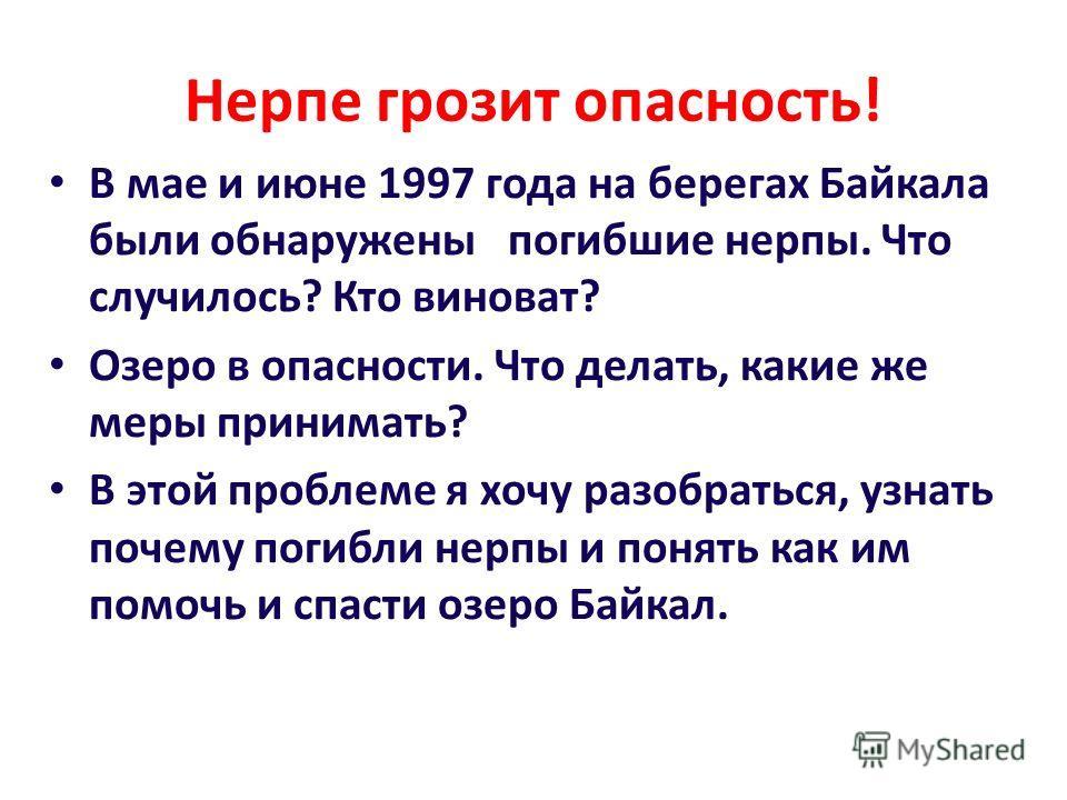 Нерпе грозит опасность! В мае и июне 1997 года на берегах Байкала были обнаружены погибшие нерпы. Что случилось? Кто виноват? Озеро в опасности. Что делать, какие же меры принимать? В этой проблеме я хочу разобраться, узнать почему погибли нерпы и по