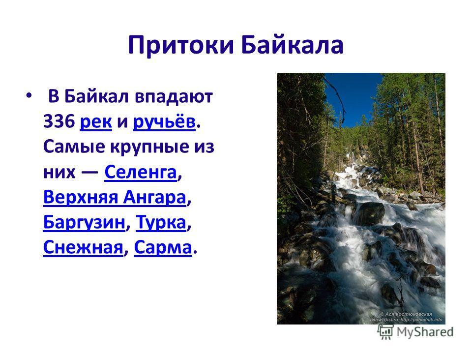 Притоки Байкала В Байкал впадают 336 рек и ручьёв. Самые крупные из них Селенга, Верхняя Ангара, Баргузин, Турка, Снежная, Сарма.рекручьёвСеленга Верхняя Ангара БаргузинТурка СнежнаяСарма