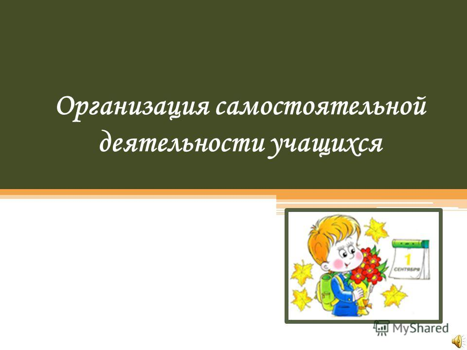 Организация самостоятельной деятельности учащихся