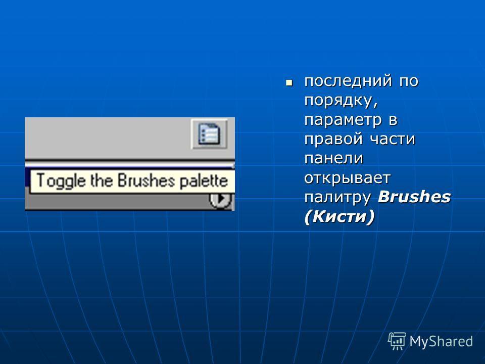 последний по порядку, параметр в правой части панели открывает палитру Brushes (Кисти) последний по порядку, параметр в правой части панели открывает палитру Brushes (Кисти)