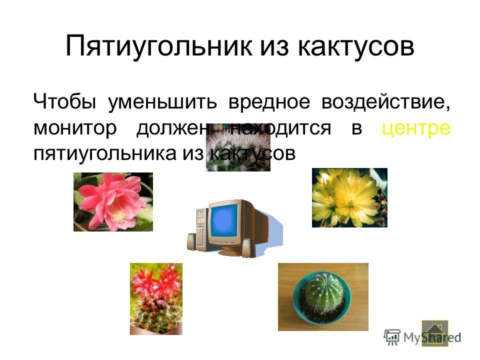 Пятиугольник из кактусов Чтобы уменьшить вредное воздействие, монитор должен находится в центре пятиугольника из кактусов