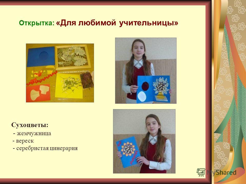 Открытка: «Для любимой учительницы» Сухоцветы: - жемчужница - вереск - серебристая цинерария