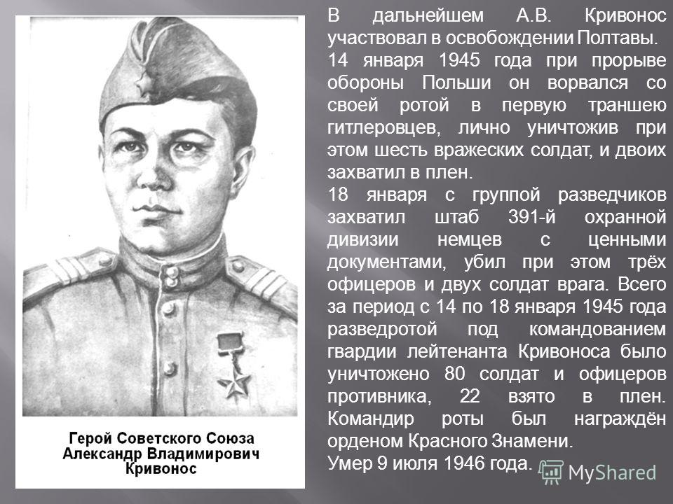 В дальнейшем А.В. Кривонос участвовал в освобождении Полтавы. 14 января 1945 года при прорыве обороны Польши он ворвался со своей ротой в первую траншею гитлеровцев, лично уничтожив при этом шесть вражеских солдат, и двоих захватил в плен. 18 января