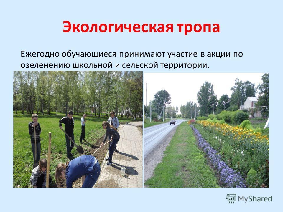 Экологическая тропа Ежегодно обучающиеся принимают участие в акции по озеленению школьной и сельской территории.