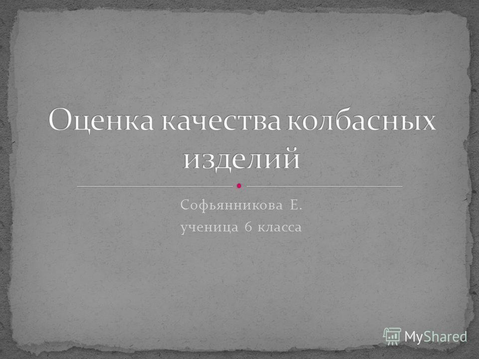 Софьянникова Е. ученица 6 класса