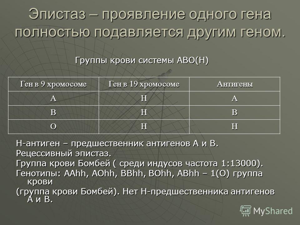 Эпистаз – проявление одного гена полностью подавляется другим геном. Н-антиген – предшественник антигенов А и В. Рецессивный эпистаз. Группа крови Бомбей ( среди индусов частота 1:13000). Генотипы: ААhh, AOhh, BBhh, BOhh, ABhh – 1(O) группа крови (гр