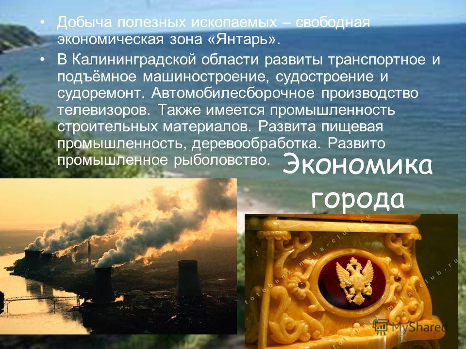 Экономика города Добыча полезных ископаемых – свободная экономическая зона «Янтарь». В Калининградской области развиты транспортное и подъёмное машиностроение, судостроение и судоремонт. Автомобилесборочное производство телевизоров. Также имеется про