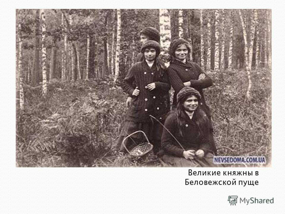 Великие княжны в Беловежской пуще
