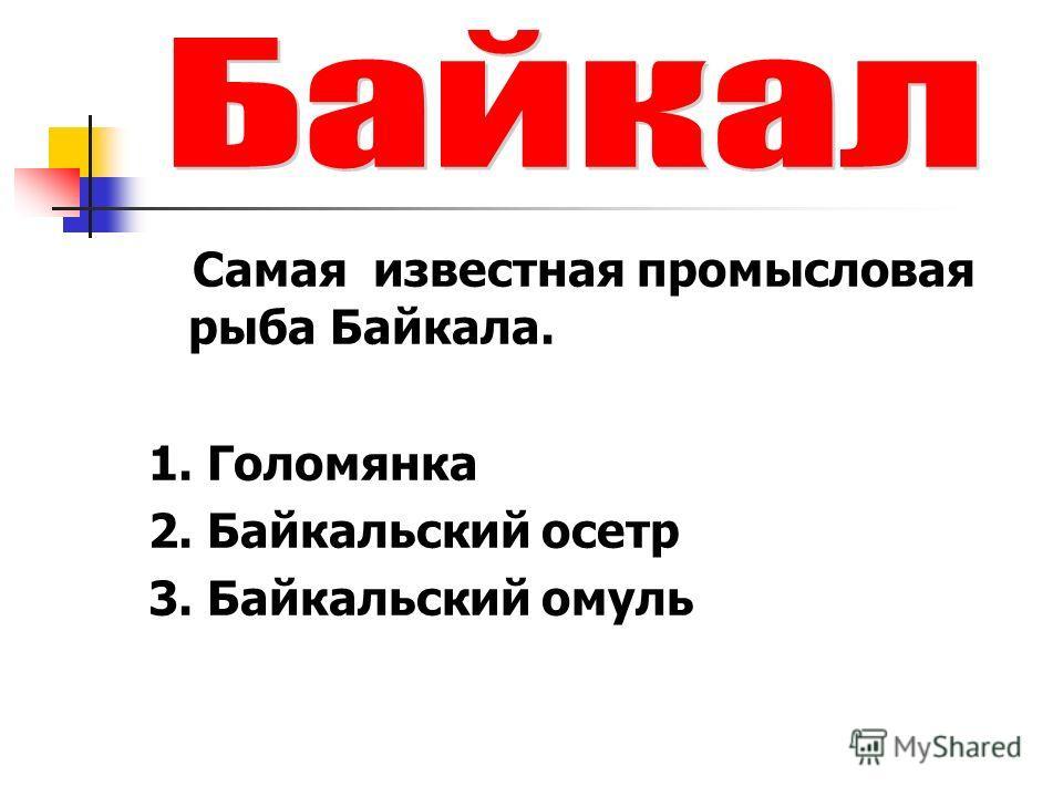 Самая известная промысловая рыба Байкала. 1. Голомянка 2. Байкальский осетр 3. Байкальский омуль