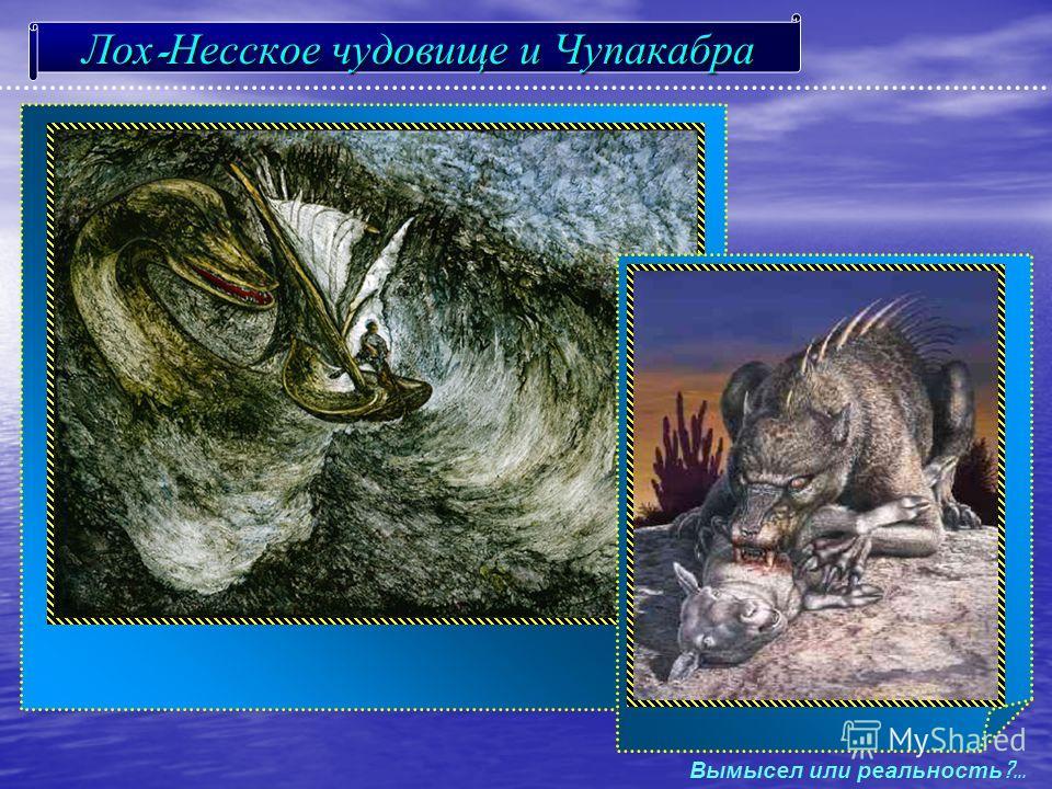 Лох - Несское чудовище и Чупакабра Вымысел и ли р еальность ?...