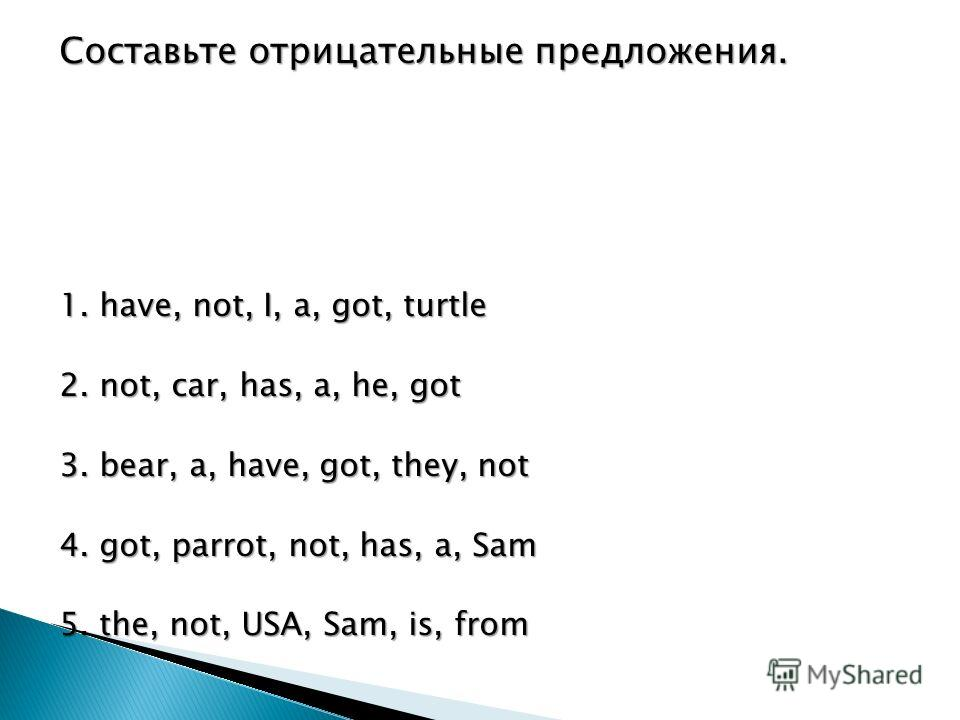 Составьте отрицательные предложения. 1. have, not, I, a, got, turtle 2. not, car, has, a, he, got 3. bear, a, have, got, they, not 4. got, parrot, not, has, a, Sam 5. the, not, USA, Sam, is, from