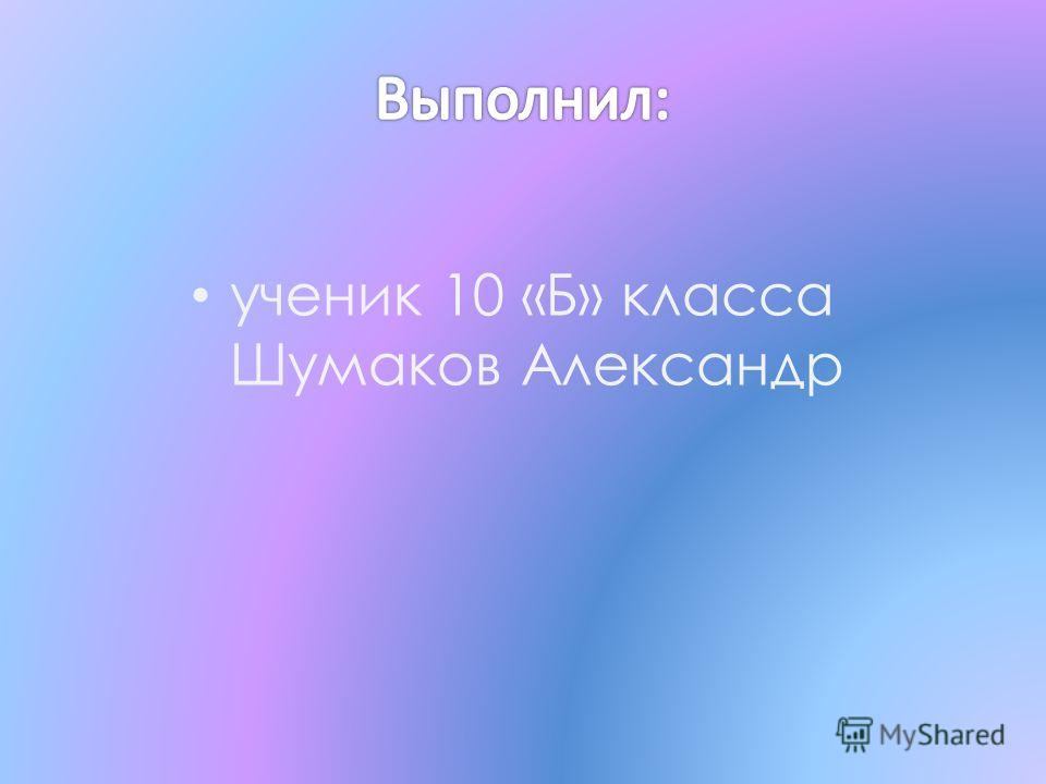 ученик 10 «Б» класса Шумаков Александр