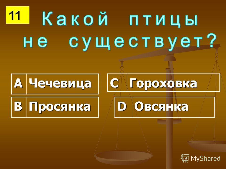 АЧечевица СГороховка ВПросянкаDОвсянка 11