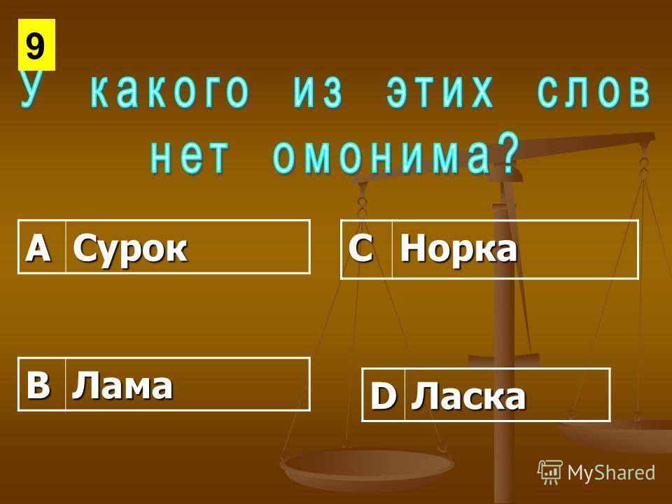 АСурок СНорка ВЛама DЛаска 9
