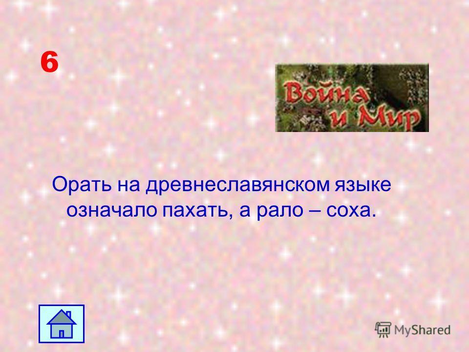 5 Братья и сестры: Александр - литератор, лингвист (1855 - 1913 г.г.); Николай - художник (1858 -1889 г.г.); Михаил - писатель, юрист (1868 - 1936 г.г.); Иван - учитель (известный московский педагог) (1861 - 1922 г.г.); Мария - художница-пейзажистка