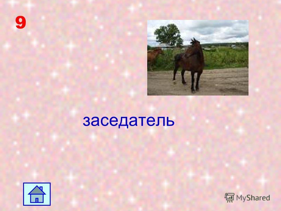 8 Усадьба находилась в селе Мелихово Серпуховского уезда Московской губернии