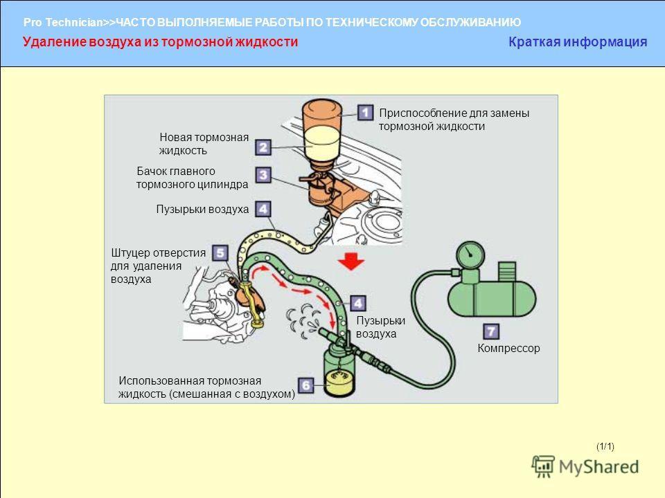 (1/2) Pro Technician>>ЧАСТО ВЫПОЛНЯЕМЫЕ РАБОТЫ ПО ТЕХНИЧЕСКОМУ ОБСЛУЖИВАНИЮ (1/1) Приспособление для замены тормозной жидкости Новая тормозная жидкость Пузырьки воздуха Штуцер отверстия для удаления воздуха Использованная тормозная жидкость (смешанна