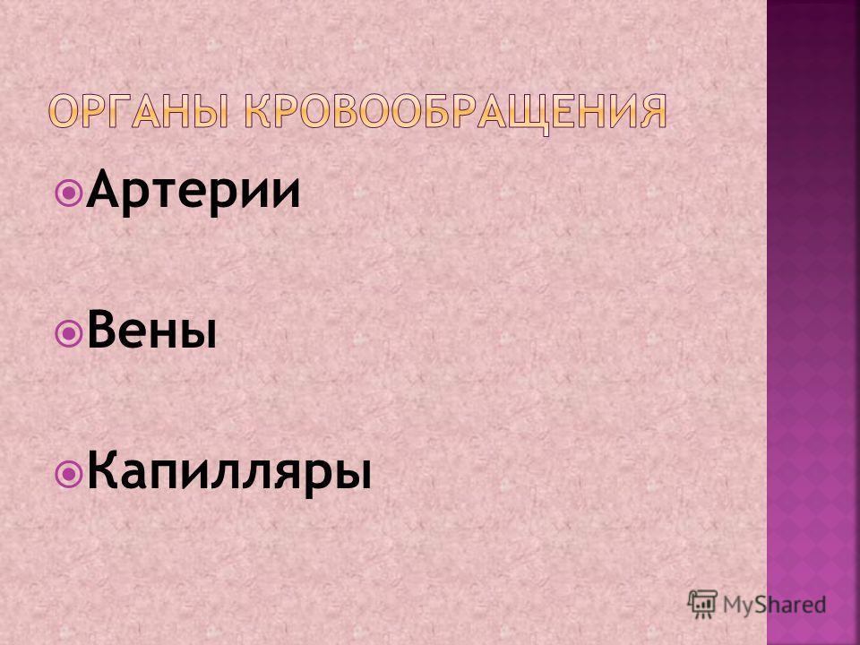 Артерии Вены Капилляры