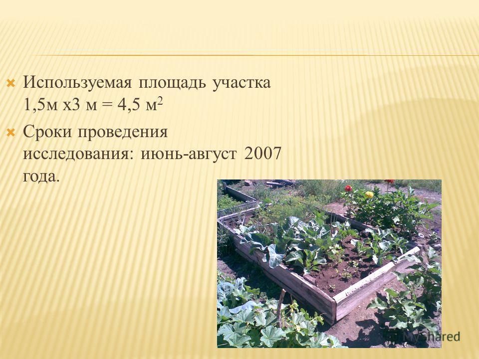 Используемая площадь участка 1,5м х3 м = 4,5 м 2 Сроки проведения исследования: июнь-август 2007 года.