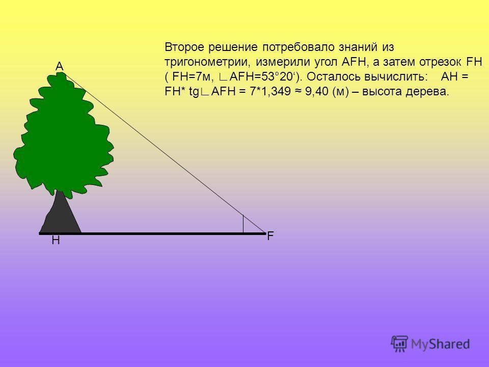 Н F А Второе решение потребовало знаний из тригонометрии, измерили угол АFН, а затем отрезок FH ( FH=7м, AFH=53°20). Осталось вычислить: AH = FH* tgAFH = 7*1,349 9,40 (м) – высота дерева.