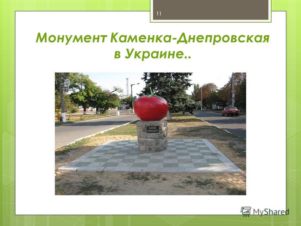 11 Монумент Каменка-Днепровская в Украине..